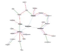 Exemple de gràfic fet amb Rhizom